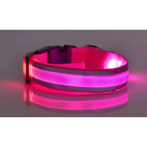 Image of Collier lumineux à Led -  - Lovely bouledogue