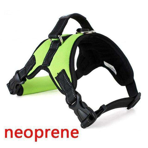 Image of Harnais de sécurité - Green Neoprene / S - Lovely bouledogue