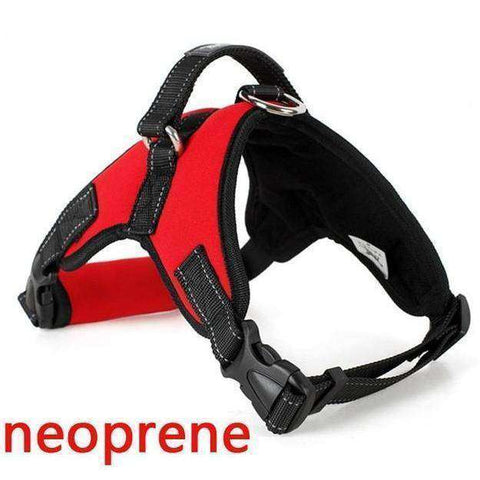Image of Harnais de sécurité - Red Neoprene / S - Lovely bouledogue