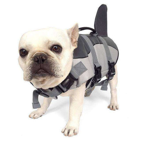 Gilet de natation Requin -  - Lovely bouledogue