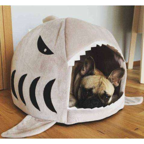 Panier en forme de requin -  - Lovely bouledogue