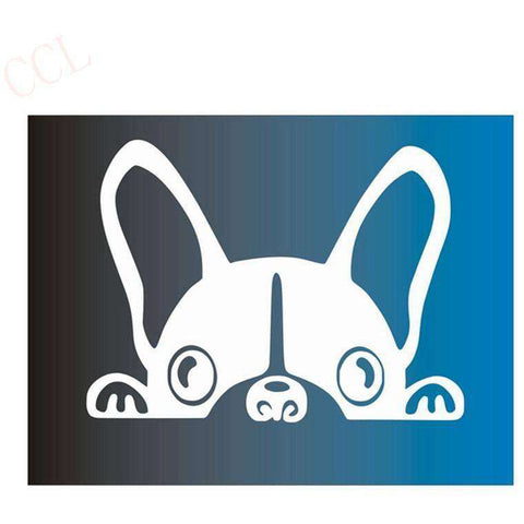 Stickers bouledogue français - blanc / 8cm x 5cm - Lovely bouledogue