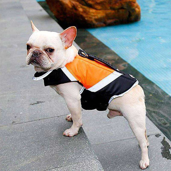 Gilet de sauvetage - Orange / L - Lovely bouledogue