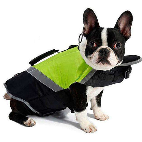 Image of Gilet de sauvetage - Vert / L - Lovely bouledogue