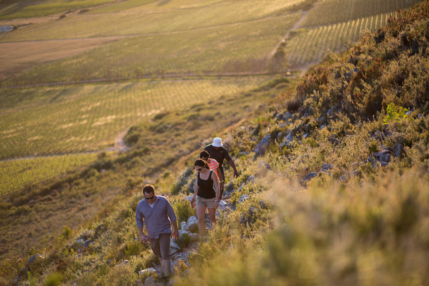 Autumn – a beautiful time to wander the Winelands