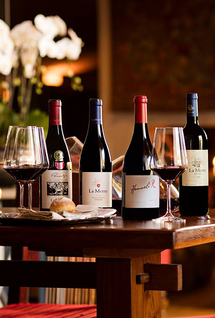 Wine tasting in franschhoek with different types of red wines