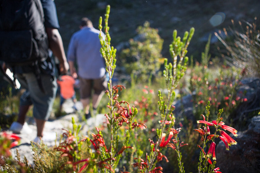 Franschhoek Hiking Trails | Franschhoek Wine Farms