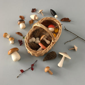 Forest Mushrooms Basket by Moon Picnic - minifili