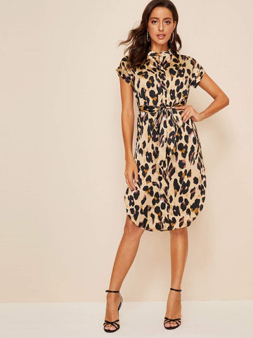 Emma Clothing Women M Allover Print Curved Hem Belted Dress