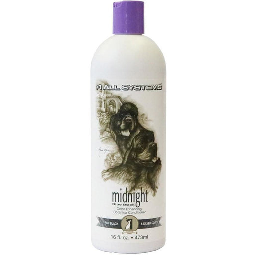 #1 All Systems Color Enhancing (Midnight) Botanical Conditioner