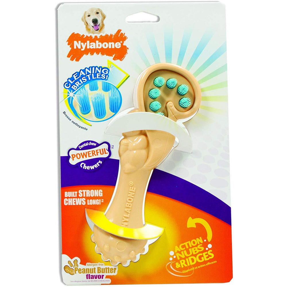 Nylabone Dental Squirrel Bristle Brush Toy