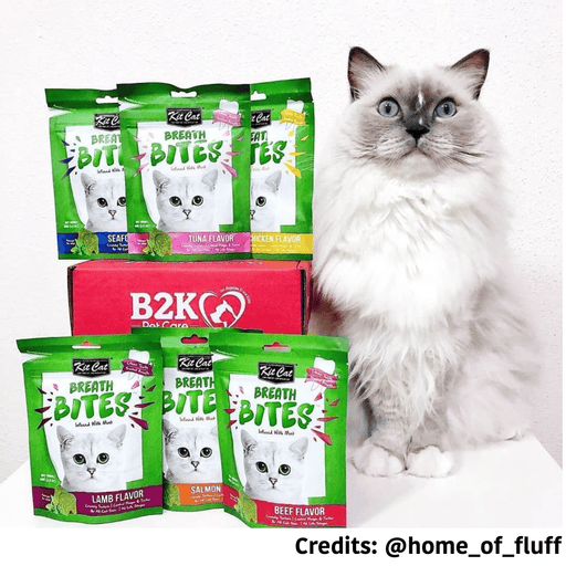 [PAWSOME DEAL]<b> 3 FOR $8.50:</b> Kit Cat Breath Bites Cat Treats