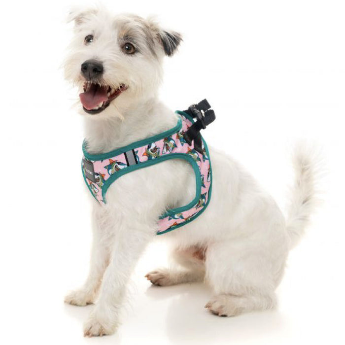 <b>15% OFF:</b> FuzzYard LL Cool Jaw$ Dog Step-In Harness