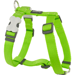 Red Dingo Classic Lime Green Dog Harness