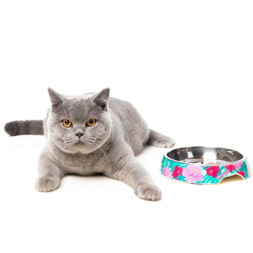 <b>15% OFF:</b> FuzzYard Lahaina Easy Feeder Cat Bowl