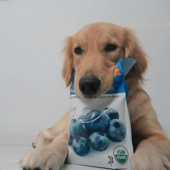 <b>10% OFF:</b> Grandma Lucy's Oven Baked Organic Blueberry Dog Treats