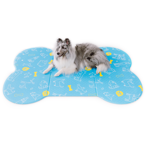 <b>15% OFF:</b> Sapsal Blue Pet Soft Mat