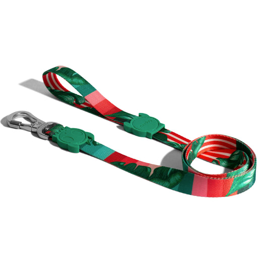 <b>10% OFF:</b> Zee Dog Bali Leash For Dogs