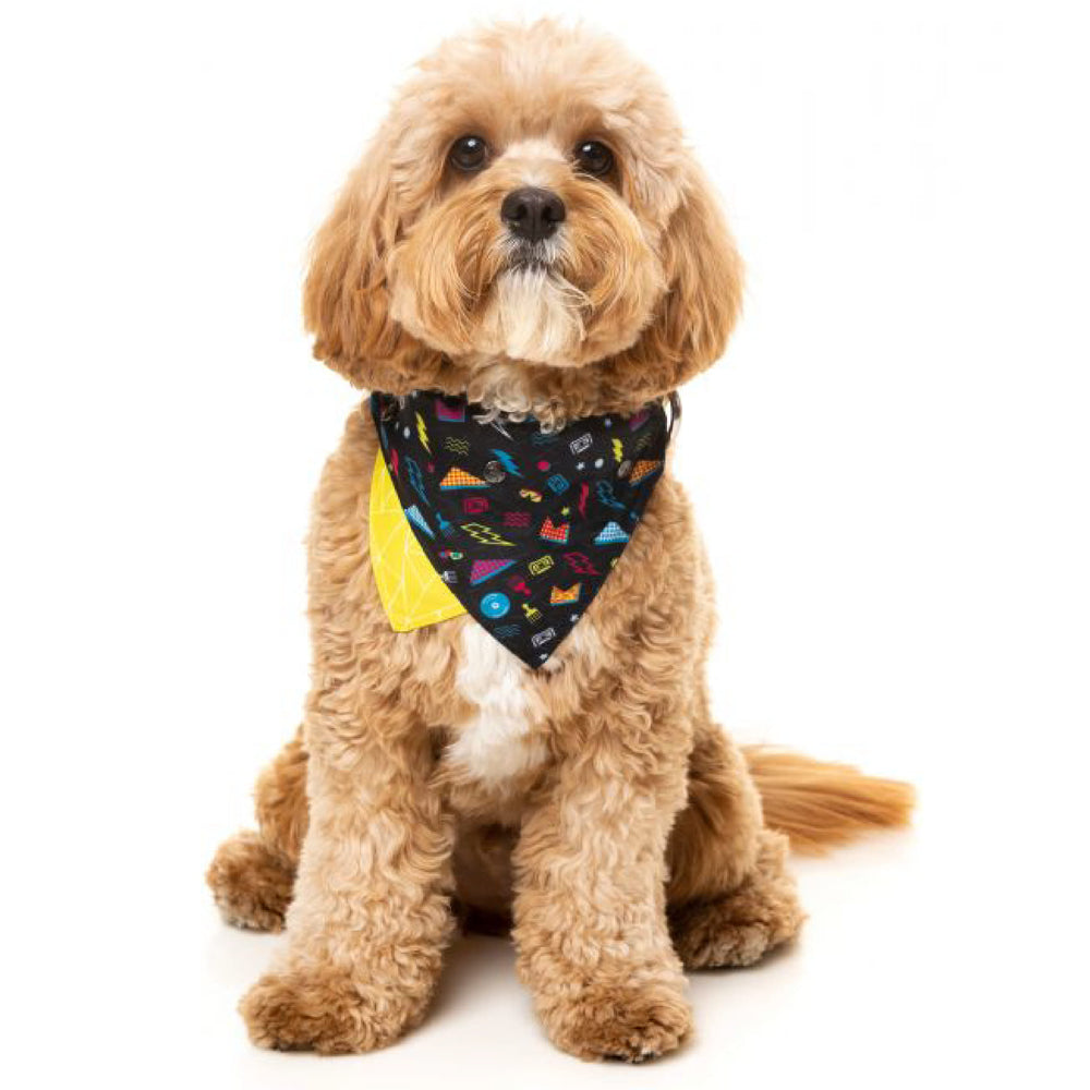 <b>15% OFF:</b> FuzzYard Bel Air Pet Bandana