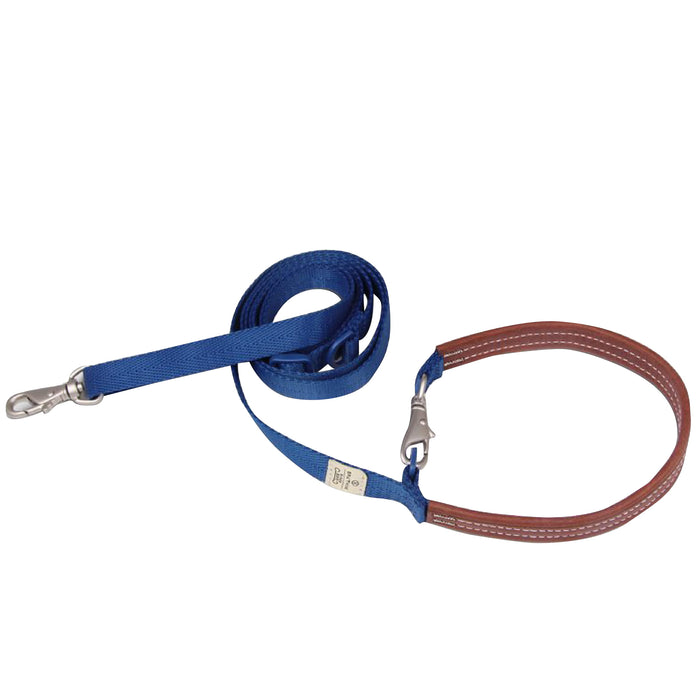 Sputnik Explore Blue Dog Leash