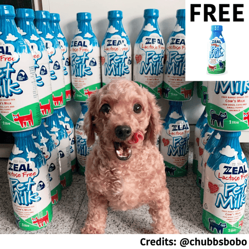 [PAWSOME DEAL] <b>BUY 2 FREE 1: </b> Zeal Lactose-Free Pet Milk