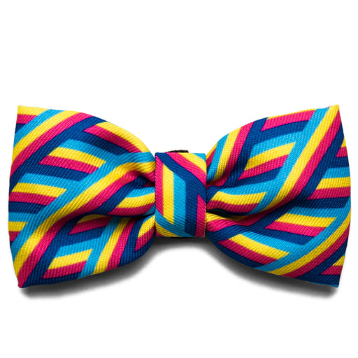 <b>10% OFF:</b> Zee Dog Bowie Bow Tie