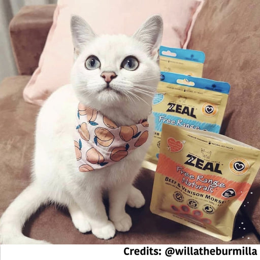 [PAWSOME DEAL] <b>3 FOR $37:</b> Zeal Free Range Natural Treats For Cats