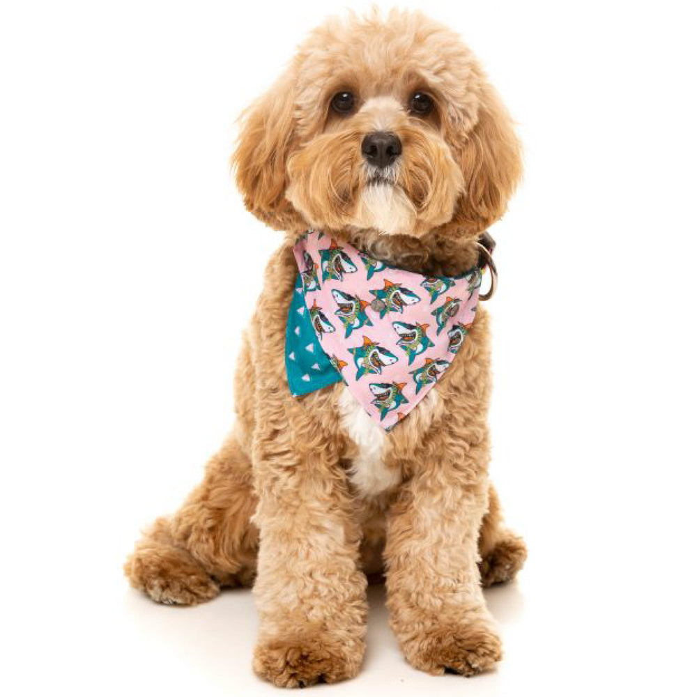 <b>15% OFF:</b> FuzzYard LL Cool Jaw$ Pet Bandana