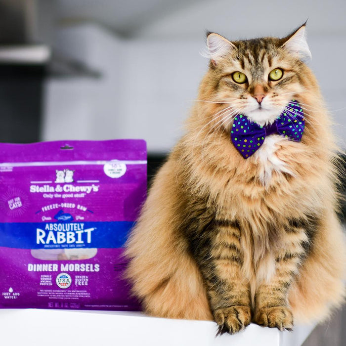 Stella & Chewy's Freeze-Dried Raw Absolutely Rabbit Dinner Morsels For Cats