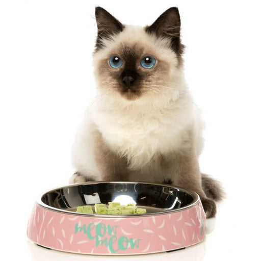 <b>15% OFF:</b> FuzzYard Featherstorm Easy Feeder Cat Bowl