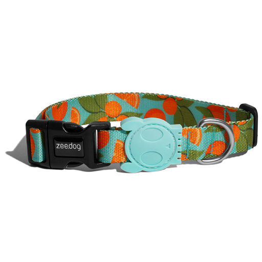 <b>10% OFF:</b> Zee Dog Florida Collar For Dogs