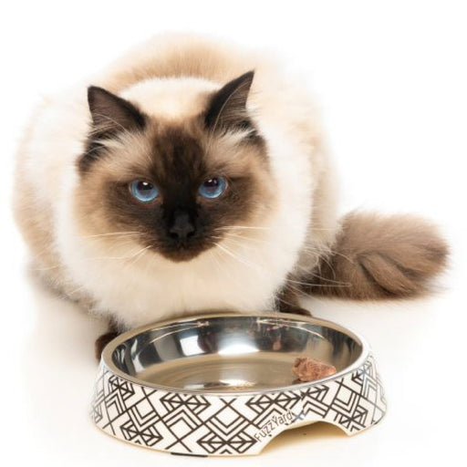<b>15% OFF:</b> FuzzYard Gatsby Easy Feeder Cat Bowl