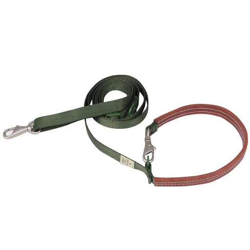 Sputnik Explore Green Dog Leash
