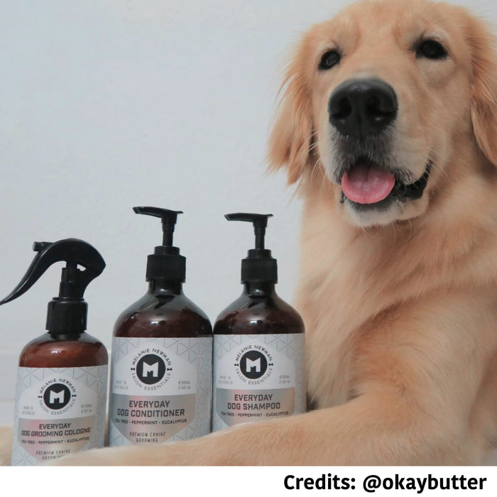 [PAWSOME DEAL] <b>EVERYDAY BUNDLE SET: </b> Melanie Newman Everyday  (Tea Tree, Peppermint & Eucalyptus) Shampoo, Conditioner & Cologne Spray