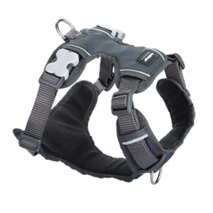Red Dingo Grey Padded Dog Harness