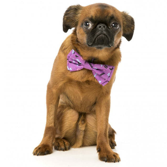 <b>15% OFF:</b> FuzzYard Purple Pet Bow Tie