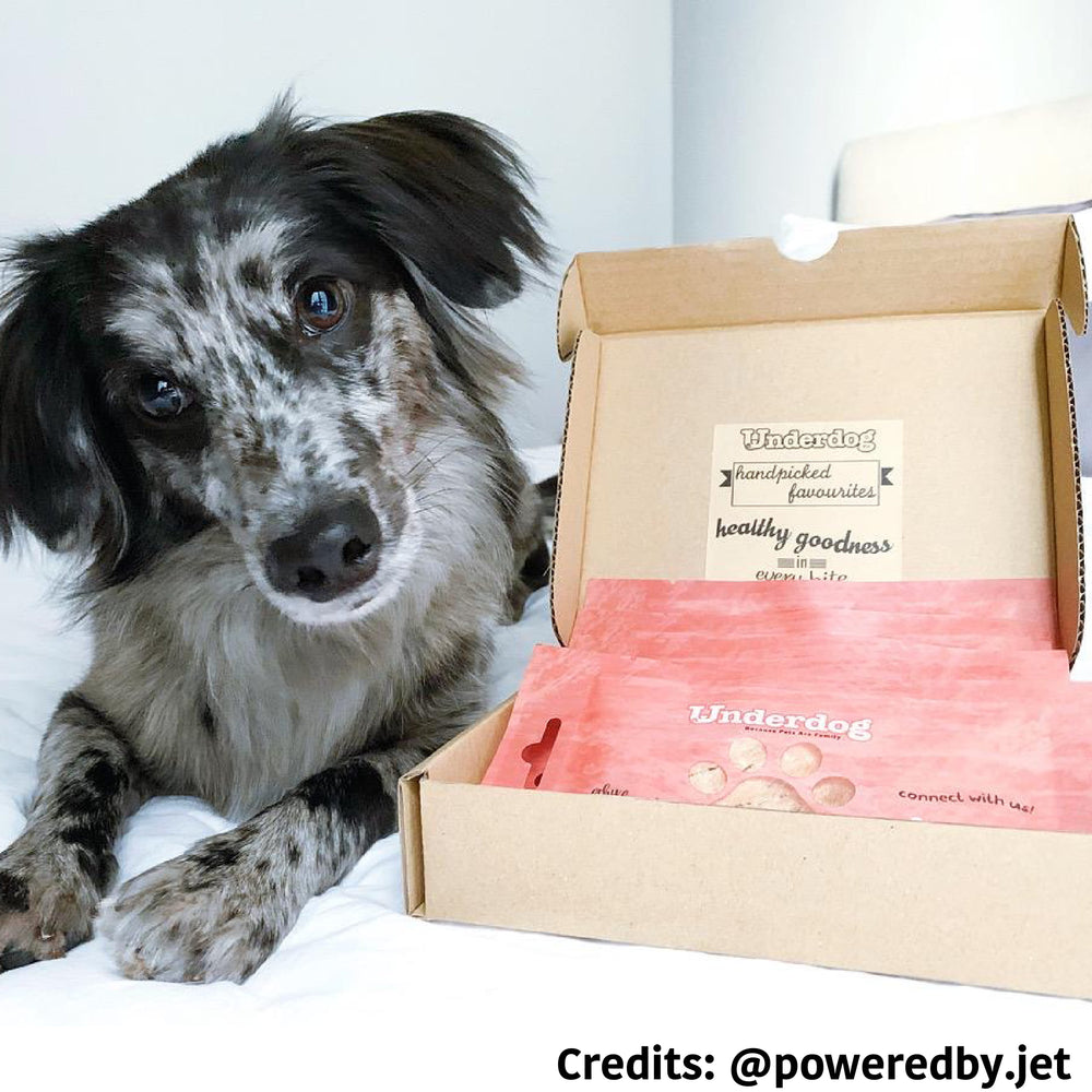 [PAWSOME DEAL] <b>$18.90:</b> Underdog Treats Box