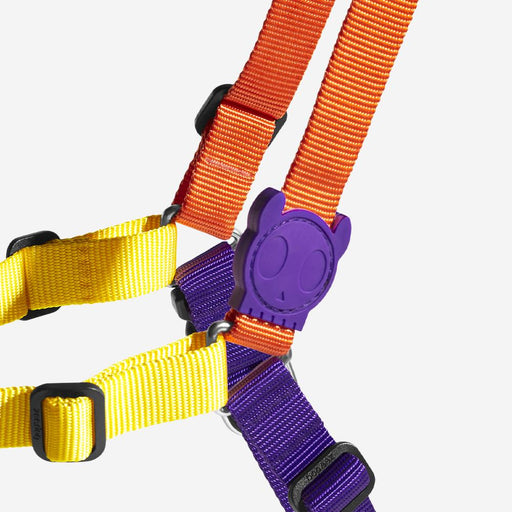 <b>10% OFF:</b> Zee Dog Pump Soft-Walk Harness For Dogs