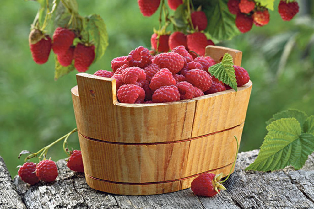 Have a perfect skin thanks to raspberries