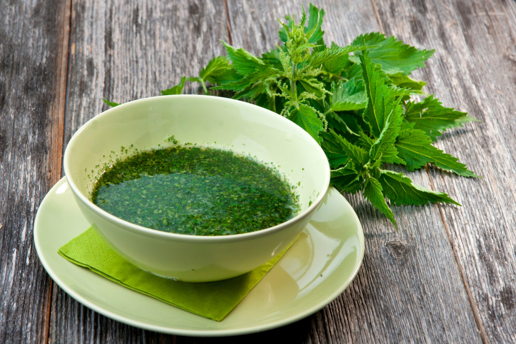 Nettle for skin problems