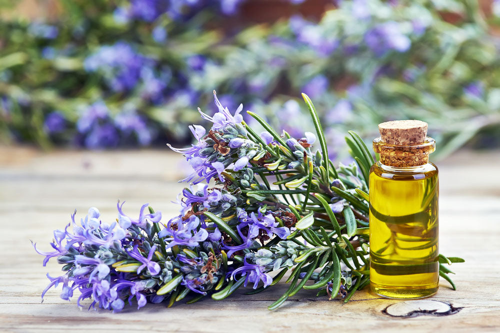 The miraculous benefits of Rosemary oil for the skin!