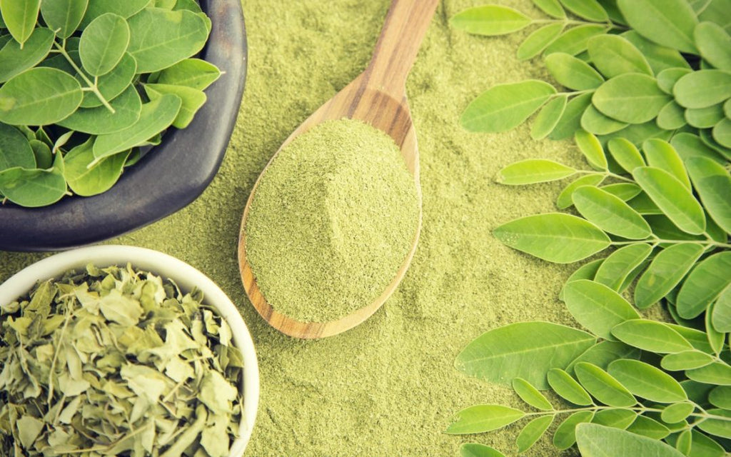 Moringa - the powerful herb for beautiful skin