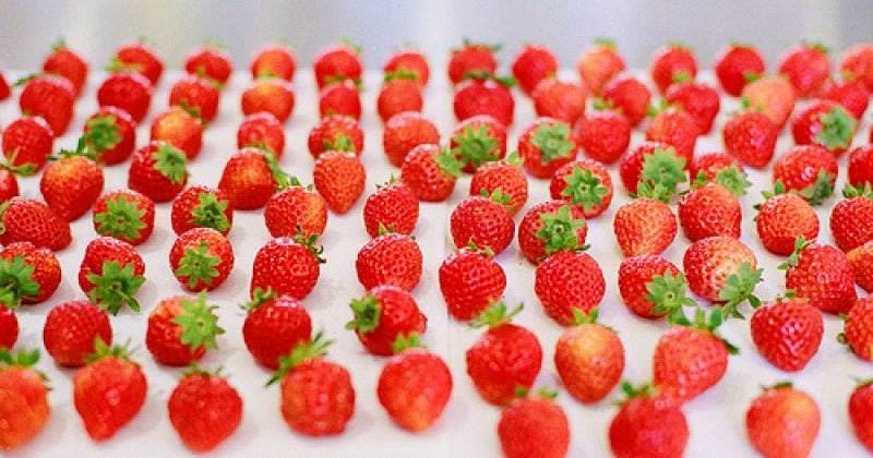 Why are the strawberries beneficial for the skin?
