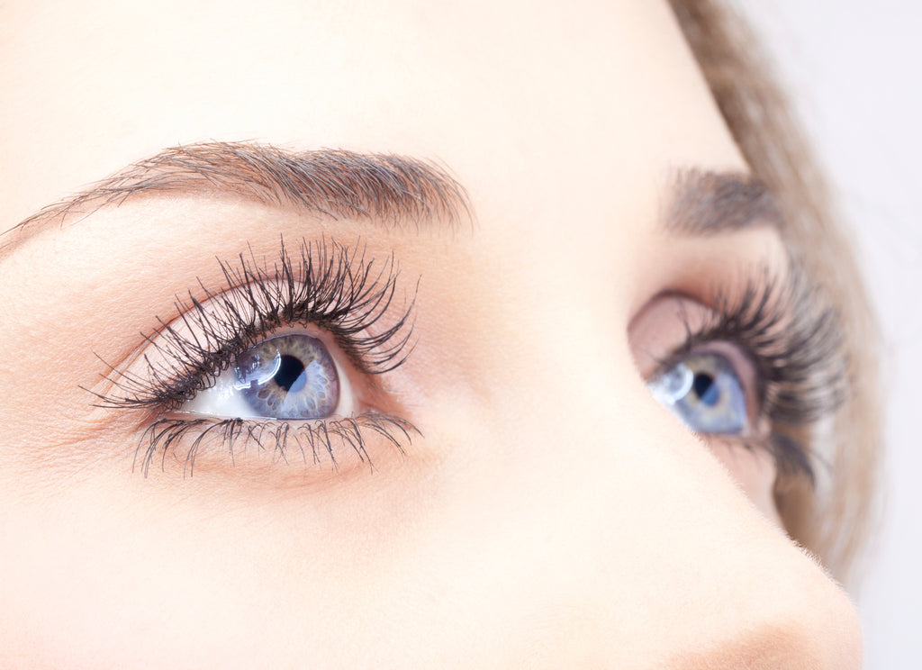 Take care of your Eyelashes