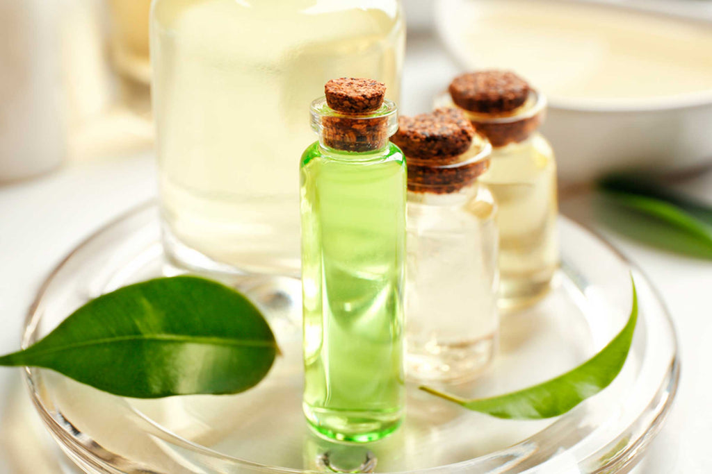 The benefits of the tea tree oil