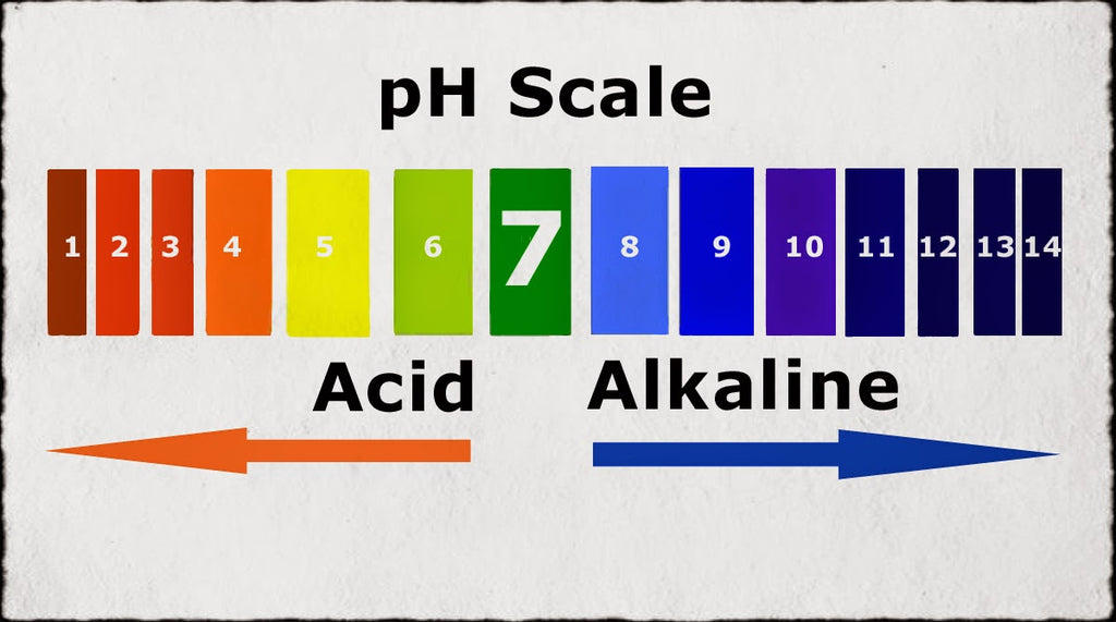 Everything you need to know about the pH of the skin