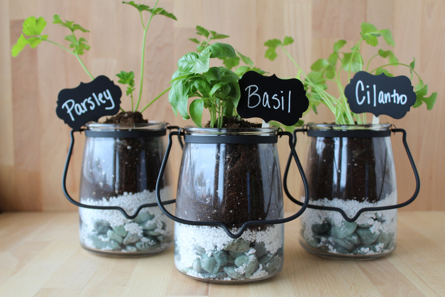 Butter Jar Reuse - DIY Herb Jar