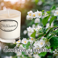 Southern Jasmine Buttershot Candle