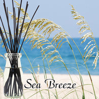 Sea Breeze Diffuser Kit