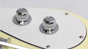 Eastwood Guitars Eastwood of Canada Custom Knob Chrome Closeup